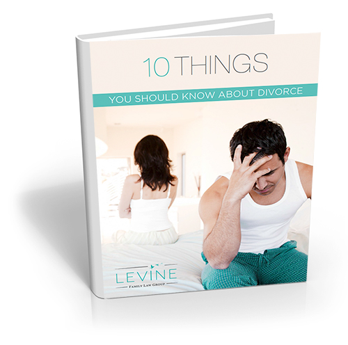 Levine Family Law E Book